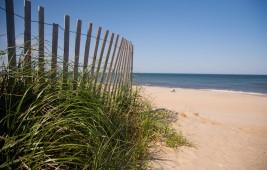 Coastal Delaware Beach Stroll